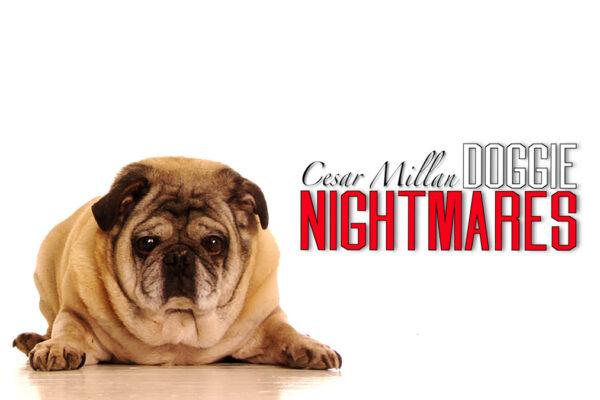 Doggie-Nightmares-Title